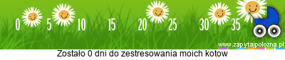 http://www.zapytajpolozna.pl/components/com_widgets/view.php?sid=11243