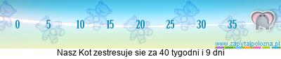 http://www.zapytajpolozna.pl/components/com_widgets/view.php?sid=12888