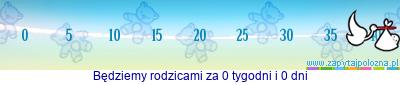 http://www.zapytajpolozna.pl/components/com_widgets/view.php?sid=190