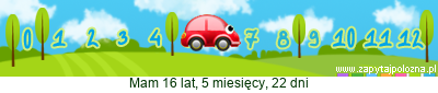 http://www.zapytajpolozna.pl/components/com_widgets/view.php?sid=201