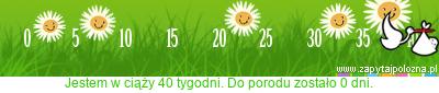 http://www.zapytajpolozna.pl/components/com_widgets/view.php?sid=36811