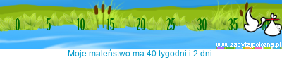 http://www.zapytajpolozna.pl/components/com_widgets/view.php?sid=5475