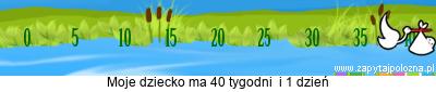 http://www.zapytajpolozna.pl/components/com_widgets/view.php?sid=566