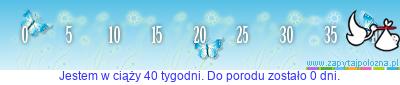 http://www.zapytajpolozna.pl/components/com_widgets/view.php?sid=57143