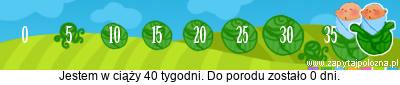 http://www.zapytajpolozna.pl/components/com_widgets/view.php?sid=73036