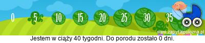 http://www.zapytajpolozna.pl/components/com_widgets/view.php?sid=74915