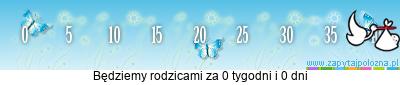 http://www.zapytajpolozna.pl/components/com_widgets/view.php?sid=9172